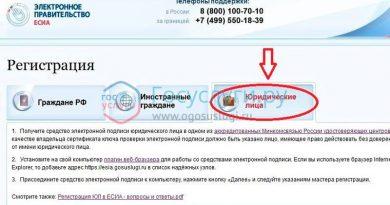 Регистрация юридического лица на портале госуслуги пошаговая инструкция